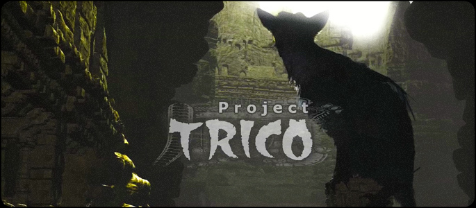 videoprojecttrico