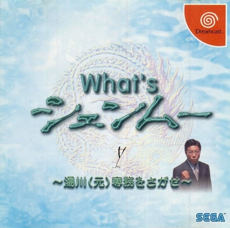 whats-shenmue-espanol-ingles